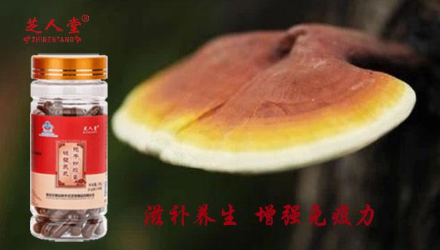 灵芝孢子粉,灵芝孢子粉增强免疫力,灵芝孢子粉滋补养生